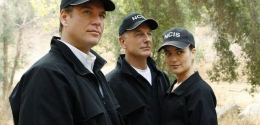 Has Mark Harmon, Cote de Pablo, or Michael Weatherly Ever Won An Emmy for 'NCIS'?