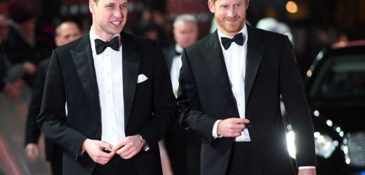 The Sad Reason Why Prince Harry Resents Prince William