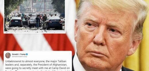 Donald Trump reveals he's cancelled TOP SECRET Taliban peace talks in incredible disclosure of US diplomatic operations