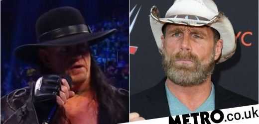 The Undertaker reveals how much he disliked Shawn Michaels during WWE feud
