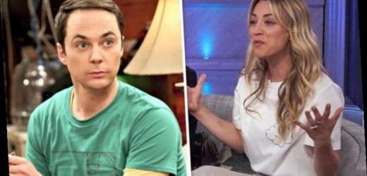 The Big Bang Theory: Penny Hofstadter star shares huge surprise with cast after finale