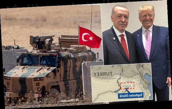 Turkey to Northern Syria and to take custody of all ISIS fighters