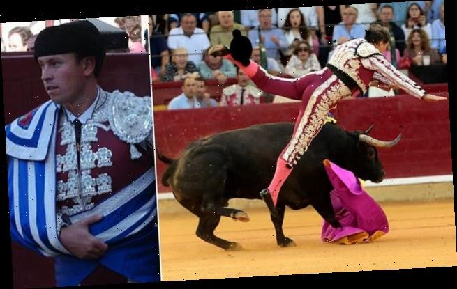 Matador suffers 'cataclysmic' injuries after bull gores him twice