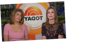 Savannah Guthrie & Hoda Kotb Voiced Support For Matt Lauer's Latest Accuser