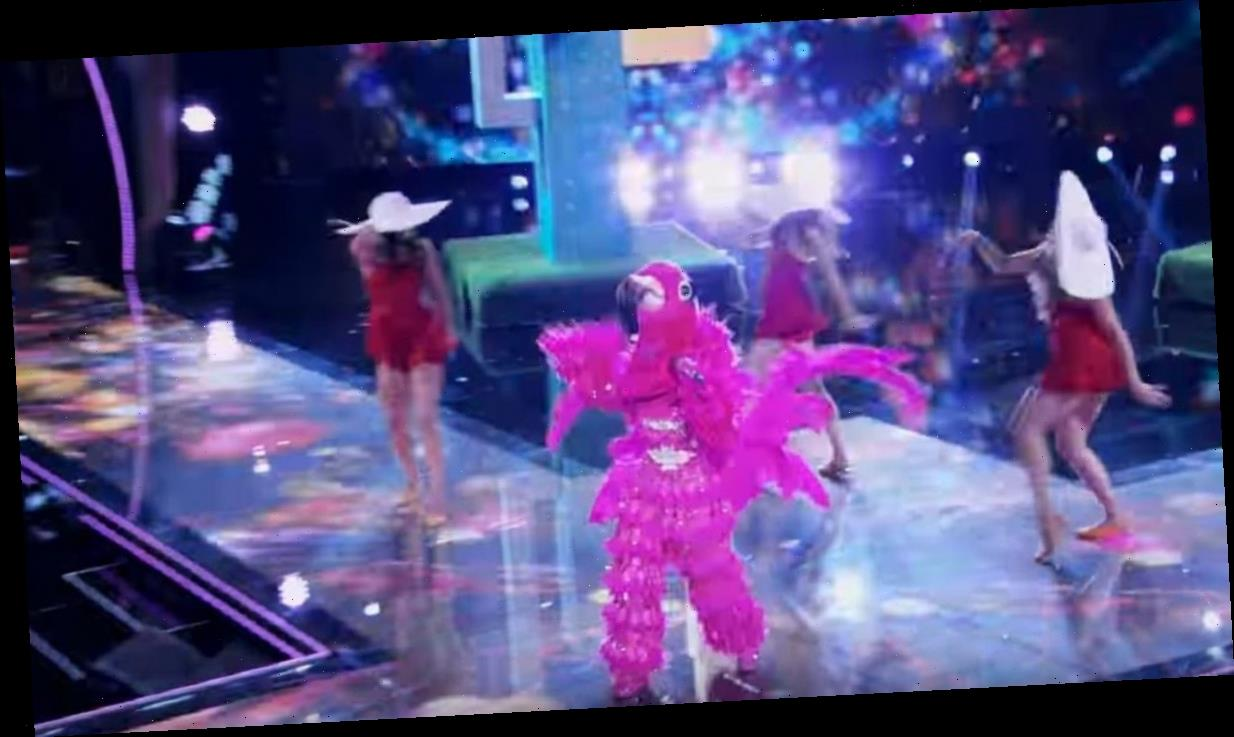 Who is Flamingo on The Masked Singer? Fans think it is Adrienne Bailon