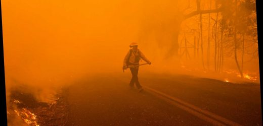 California fires spark state of emergency as hurricane winds fan inferno and leave at least 11 injured – The Sun