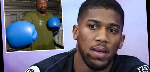 Anthony Joshua calls in 'ideal sparring partner' Dereck Chisora to prepare for must-win Andy Ruiz Jr rematch – The Sun