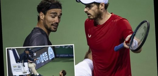 Watch fuming Andy Murray's extraordinary on-court bust-up with Fabio Fognini as he tells rival to 'shut up' at Shanghai Masters – The Sun