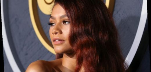 Is Zendaya Dating Her 'Euphoria' Co-Star?