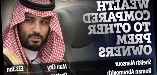 How Mohammed bin Salman, linked with Man Utd takeover, compares to the richest Premier League club owners – The Sun