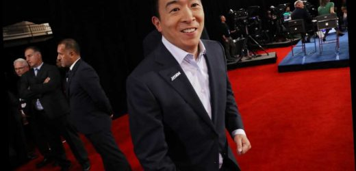 Andrew Yang's (phantom) robot menace