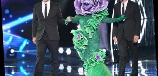 Fans Think The Flower On 'The Masked Singer' Is This '90s Sitcom Star