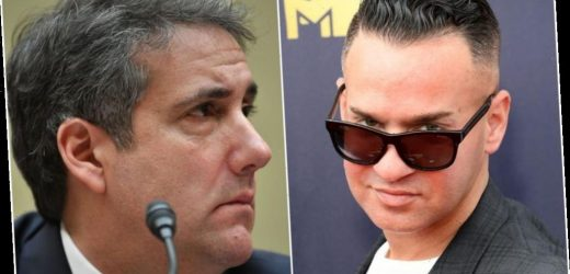 Mike 'The Situation' Sorrentino Talks About Meeting Donald Trump's Lawyer Michael Cohen in Prison