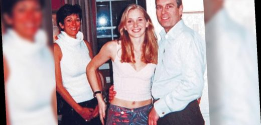 Prince Andrew's friends claim photos with Epstein were fake: report