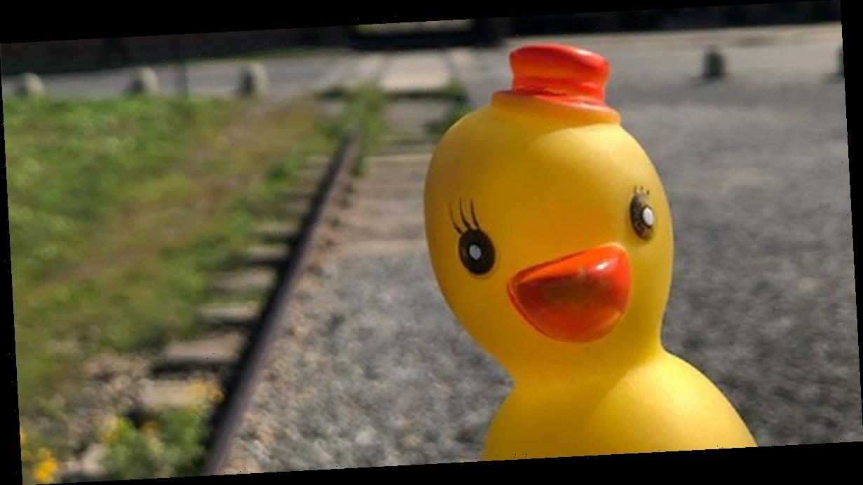 Instagrammer sparks outrage by posing with smiling rubber duck outside Auschwitz
