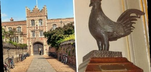 Cambridge University to return bronze cockerel looted from Nigeria