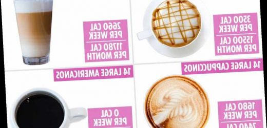 Weight loss: Coffee could be adding 15,000kcals to your diet a month – the best swaps for dieters – The Sun