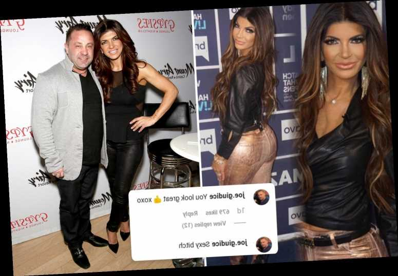 Joe Giudice calls estranged Real Housewife Teresa a 'Sexy B***h' in flirty Instagram post – The Sun