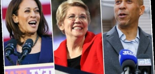 2020 Presidential Contenders Who Will Challenge Trump So Far (Photos)