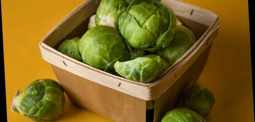 Brussels sprout shortage means they may be off the menu this Christmas – The Sun