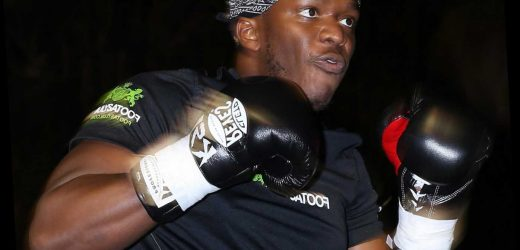 KSI confirms he will step into ring again after Logan Paul win… but is only interested in 'celebs' for next fight – The Sun