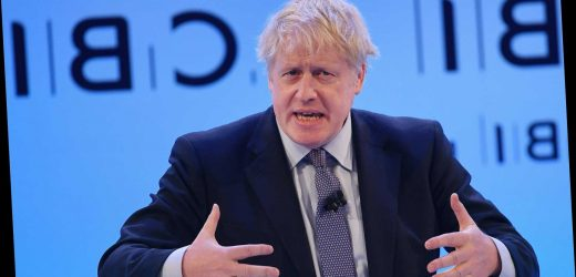 Boris Johnson vows crime crackdown with 24 hour target for charging knife thugs