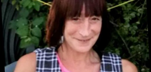 Desperate search for missing woman, 55, who vanished after walking out of Yeovil Hospital – The Sun