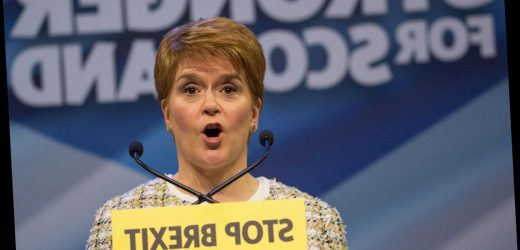 SNP manifesto: What are their policies and pledges ahead of 2019 general election? – The Sun