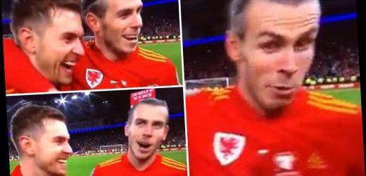 Watch buzzing Gareth Bale swear live on TV as Wales celebrate Euro 2020 qualification – The Sun