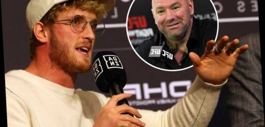 Logan Paul demands UFC fight after KSI rematch and insists he won't take on another YouTuber as he is too 'skilful' – The Sun