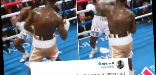 Watch Deontay Wilder 'knock the soul and spirit' out of Luis Ortiz with brutal right that left crowd gasping with shock – The Sun