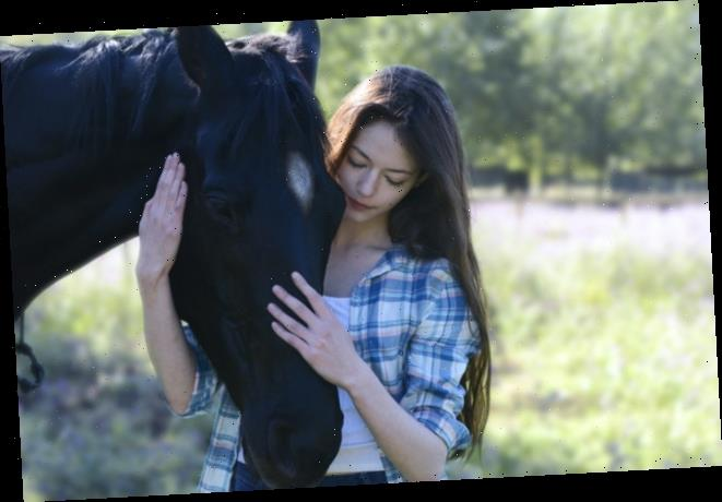 AFM: First Look at 'Black Beauty' Remake With Mackenzie Foy