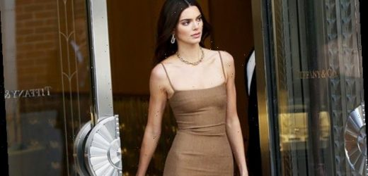 Kendall & Kylie Jenner: 8 Times The Sisters Rocked Sexy Body-Hugging Mini Dresses – Pics