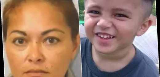 Toddler, 3, found dead in pool of his own vomit 'after being beaten by evil foster mother who claimed he fell'