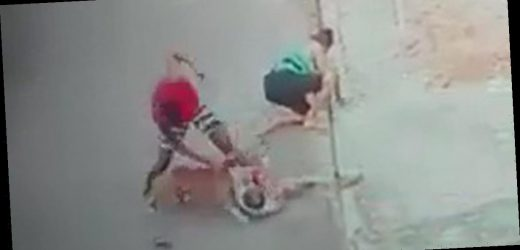 Hero saves helpless boy from vicious pitbull attack with superb quick-thinking