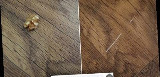 Woman used a walnut to remove white marks on her laminated floor