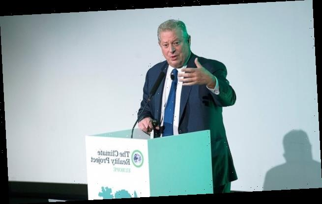 Al Gore slams Brexit as 'the stupidest decision a country could' make