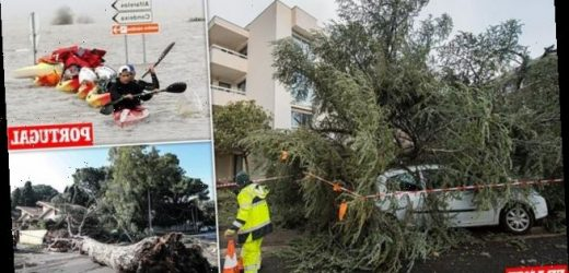 European storm death toll rises to nine as 100mph winds lash continent