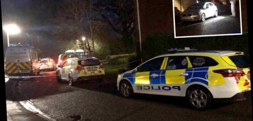 Woman found dead with 'throat slashed' inside detached Surrey home as two men arrested