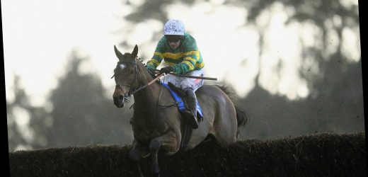 Sandown Betting Preview: Tips, racecard and analysis for the Grade 1 Tingle Creek this Saturday