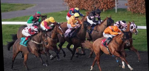 Wednesday preview: Racecard, analysis and tips for the feature contest at Kempton