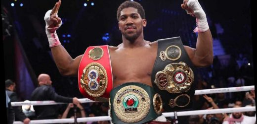 Anthony Joshua insists second world title reign will be a dream after first ended up a 'f******' headache' – The Sun