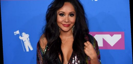 'Jersey Shore': Is Snooki Leaving the Show Because of Angelina Pivarnick?