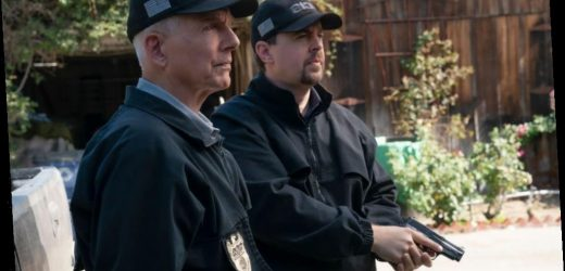 'NCIS': Mark Harmon's Brutal Response to Character Deaths