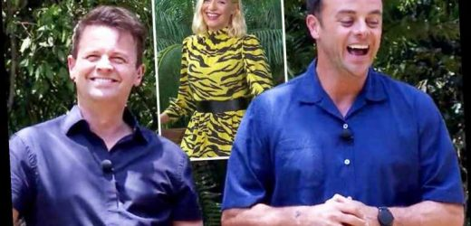 I'm A Celeb bosses 'stand by Ant and Dec as fans call for Holly Willoughby's return amid plummeting ratings' – The Sun