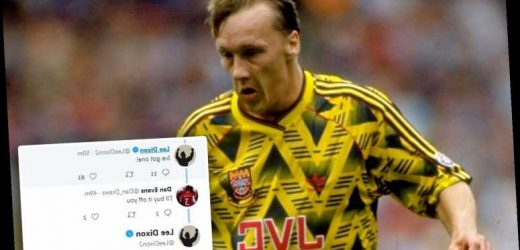 Lee Dixon refuses to flog vintage Arsenal 'Bruised Banana' kit to fans as they fume about £250 price on auction sites – The Sun