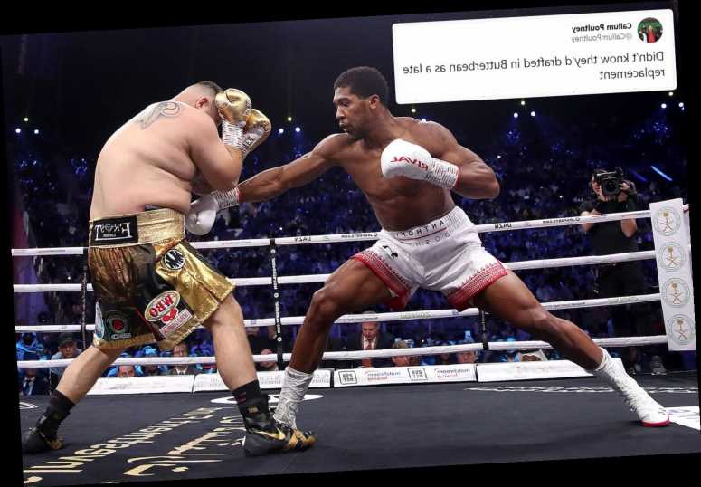 Boxing fans stunned by the sheer size of Andy Ruiz and compare him to KO king Butterbean – The Sun