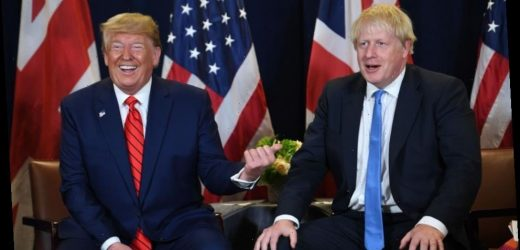 Donald Trump plans to offer Boris a happy new year with 'massive trade deal' after Brexit – The Sun