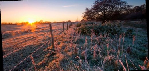 Big freeze to bring frost and send temperatures plunging to -6C