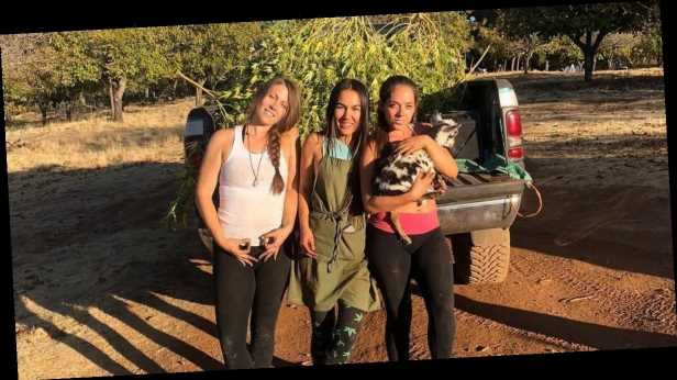 Instagram babes move off-grid to grow cannabis and live the simple life